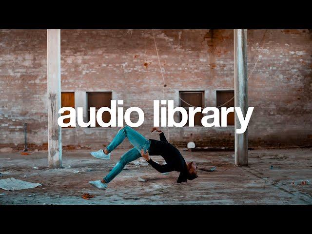 Fly - Pold  [Vlog No Copyright Music]