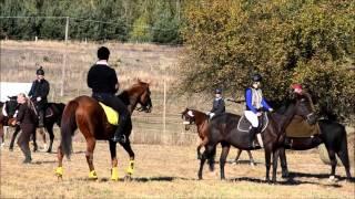 Stajnia w Dolinie HUBERTUS 2015 prezentacja koni