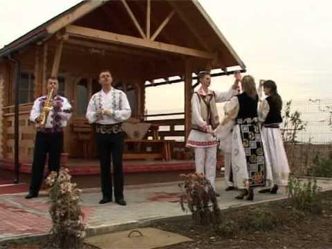 Puiu Codreanu Sunt sofer si viata mi place