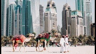Из Сочи можно и в Дубай: новое прямое авиасообщение появится летом