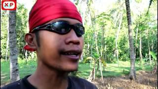 DESPACITO - Fersi Jawa Ngapak  ( Dance & Song ) #combrose (HD)