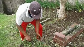 Unang Pamungkas Sedang Mengangkut dan Membuang Rumput Liar by Kamil Reoga