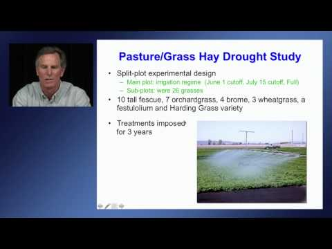 Perennial forage production with limited water