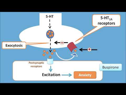 How buspirone is used in treatment of chronic anxiety - YouTube