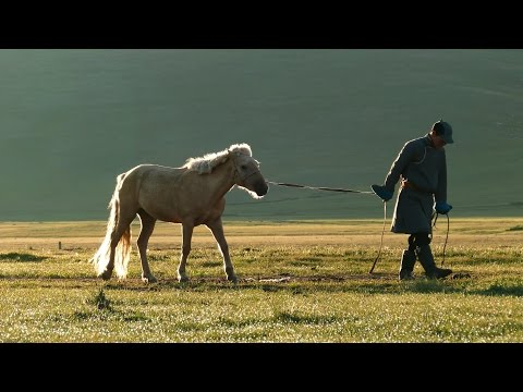 Beautiful grassland of Mongolia モンゴルの美しい草原 2015夏