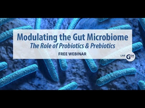 Modulating the Gut Microbiome – the Role of Probiotics and Prebiotics