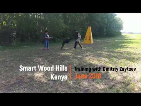Тренировка по защите с Дмитрием Зайцевым, июнь 2018
