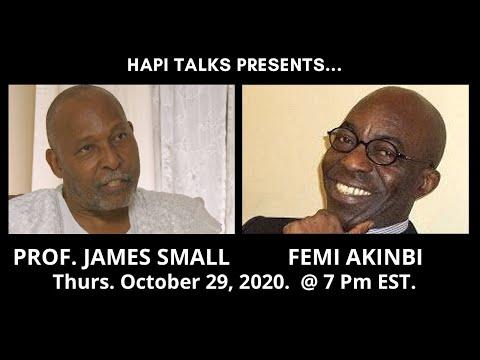 HAPI Talks - Prof. James Small & Femi Akinbi: The SARS Crisis in Nigeria | 29 Oct 2020