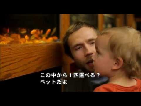 『パパ、アイ・ラブ・ユー』予告編(日本語字幕)