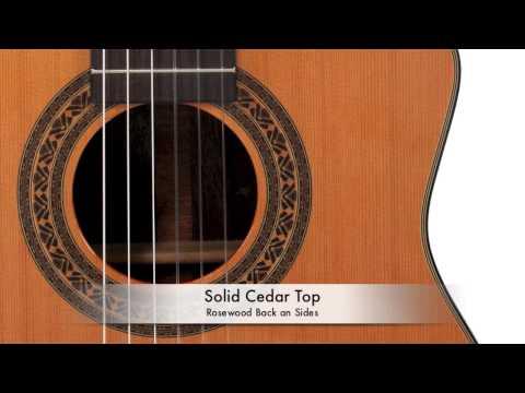 Giannini CDR PRO CEQ Thin Guitar