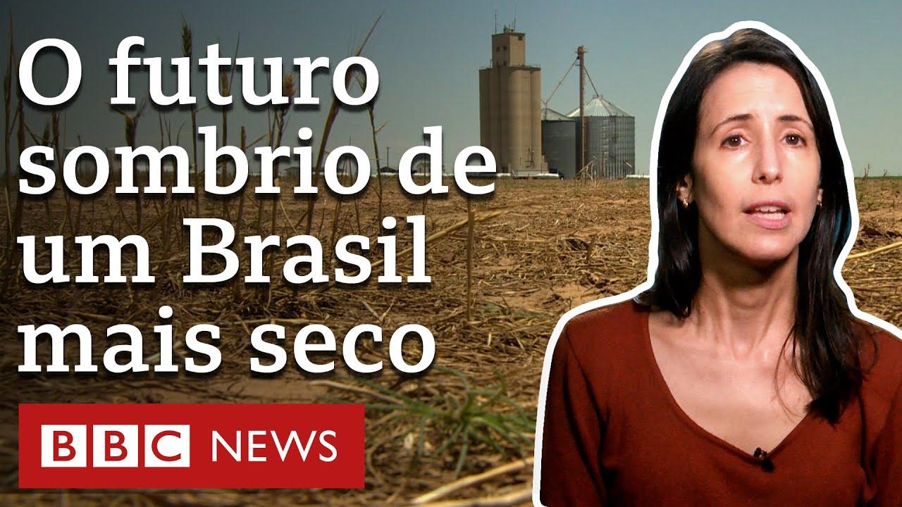 Como destruição do ambiente ameaça agricultura e expõe Brasil a clima extremo