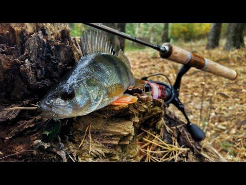 Эта блесна сделала рыбалку!!! Ловля ОКУНЯ на микроколебалки. Колебалка или воблер Часть 1.
