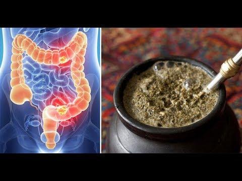 Yerba Mate 5 benefits that will shock you | Yerba mate health benefits
