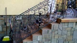 Перила 96  Кованые лестничные ограждения в Днепропетровске фото ограждение для лестницы Днепр(, 2016-11-14T11:14:56.000Z)