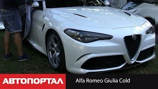 Шпионское видео (Spy video) Alfa Romeo Giulia Cold