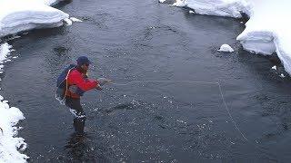 Русская Рыбалка 4 Клюет че НЕТ А если поймаю