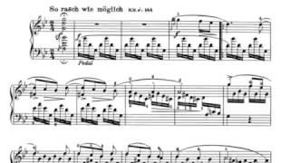 Schumann - Sonata n. 2 op.22 - I. So rasch wie möglich (1/3)