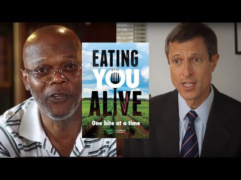 Is Our FOOD KILLING Us? What Is On YOUR Plate? Could a Whole