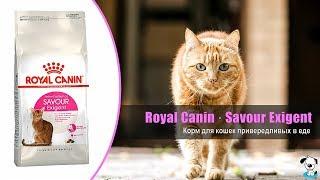 Корм для взрослых кошек привередливых в еде · Royal Canin Savour Exigent