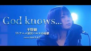 God knows...【涼宮ハルヒの憂鬱】平野綾 cover by ねおきまこ