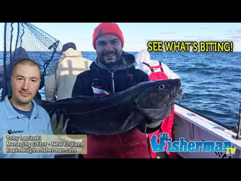 December 12, 2019 New England Fishing Report