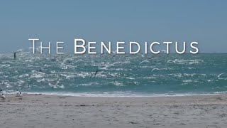 Image of The Bendictus HD video