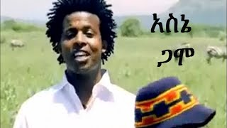 new hot ethiopian music 2014 asne abate gamo