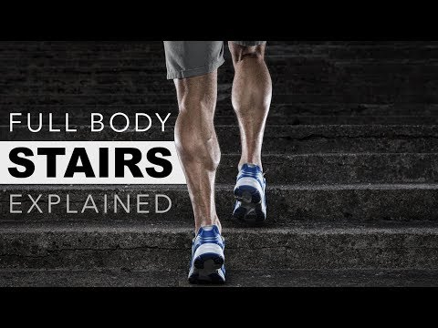 Full Body Stairs Workout Explained (Tone Muscle, Burn Fat, Cardio)