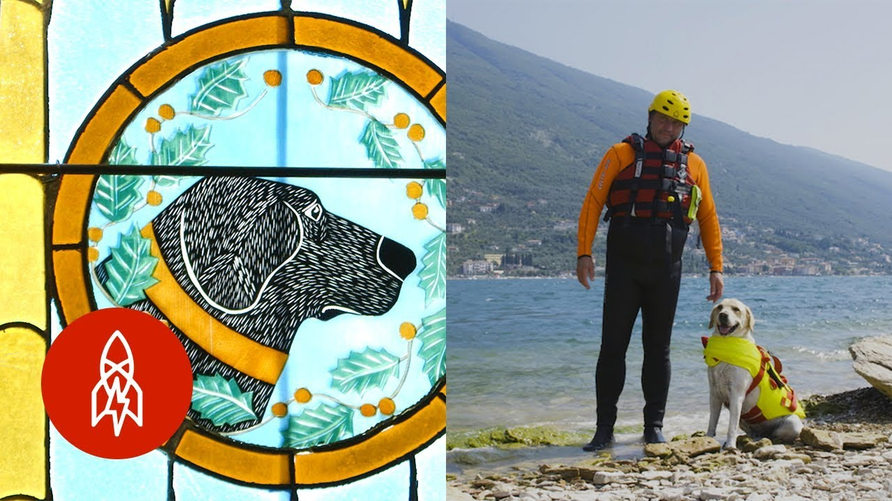 Must Love Dogs: Stories of Man's Heroic Companions