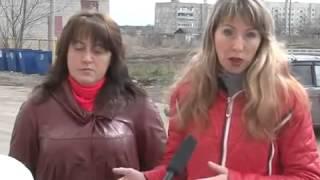 Бродячие собаки в Кораблино Рязанская обл. 27.04.2015