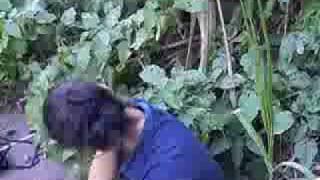 Repeat youtube video las mas putas de saposoa - ex alumnas CN Antonio Raymondi-