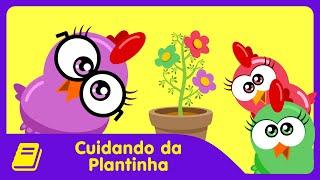 Galinha Pintadinha Mini - Historinha - Cuidando da Plantinha