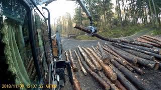 Załadunek i rozładunek drewna Cz 2. Transport Leśny