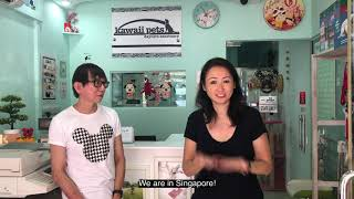 Kawaii Pets: A Deaf Owned Business in Singapore