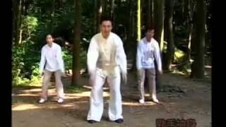 詹明樹-健康至柔太極20式.flv