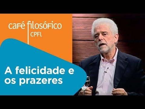 A felicidade e os prazeres | Flávio Gikovate