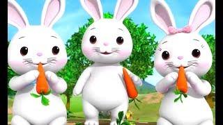 Chú Thỏ Con 🐇 Chú Vịt Con 🦆 Nhạc Thiếu Nhi Vui Nhộn - Mẹ Ơi Tại Sao