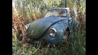Abandoned farm and car graveyard explorer Finland