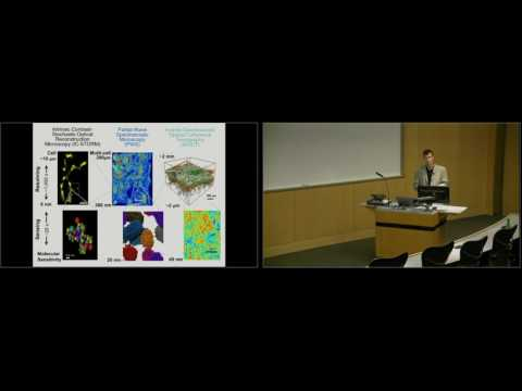 Visualization Tools & Tumor Models for Cancer Research