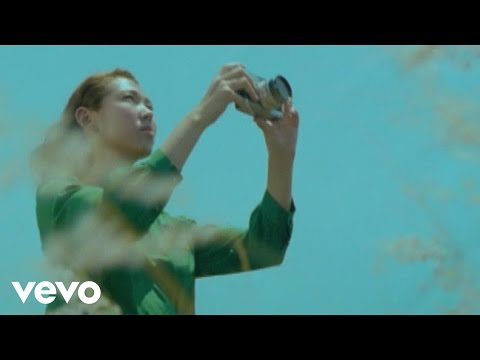 王若琳 Joanna Wang - Wild World