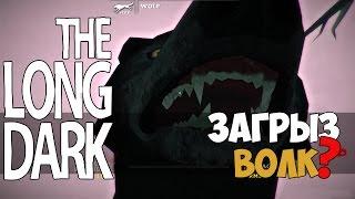 The Long Dark - Загрыз Волк? #7