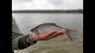 Семёновка Любительский фидер Ловля плотвы в марте Рыбалка на водохранилище весной