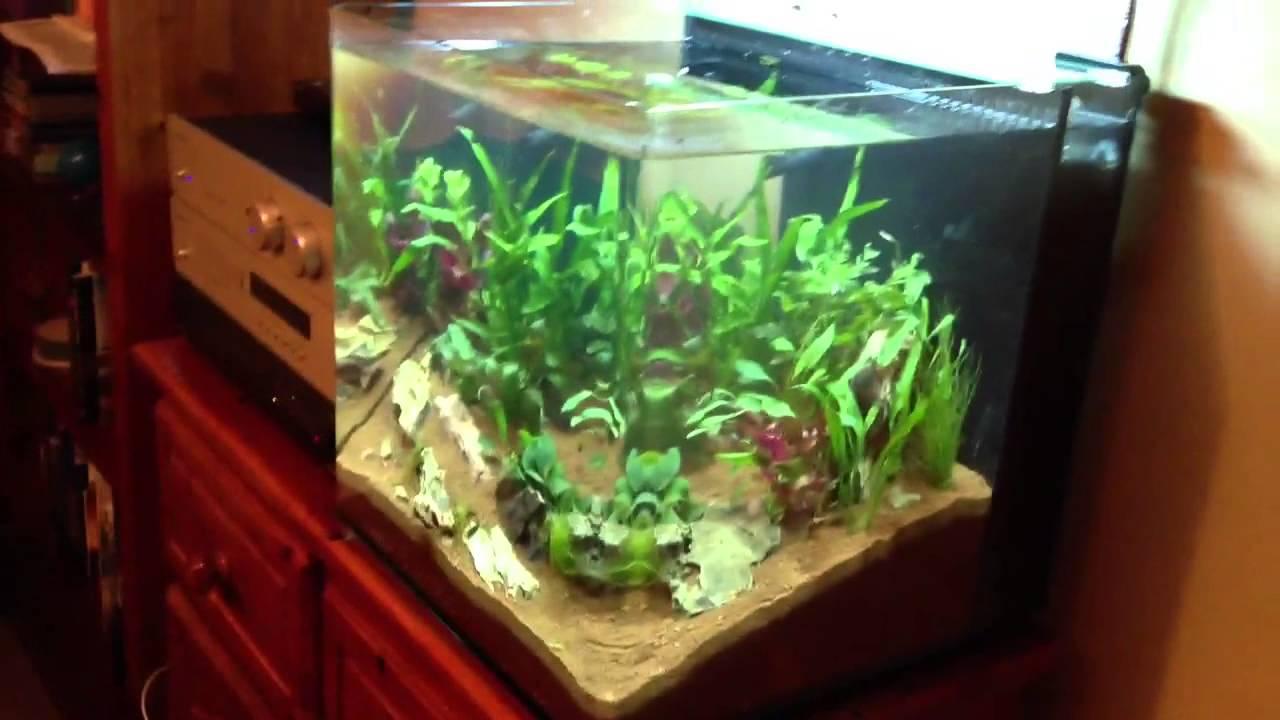 New aqua cube aquarium youtube for Aquarium cuve