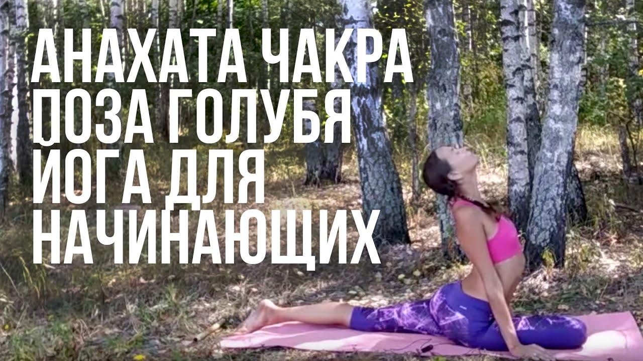 Анахата чакра. Поза Голубя. Йога для начинающих.
