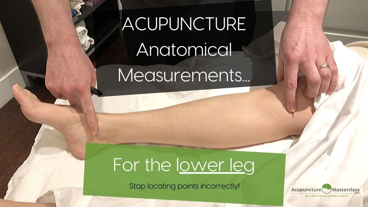 Acupuncture Point Location - Measurements of the Lower Leg [2020]