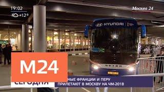 Сборные Франции и Перу прилетают в Москву на ЧМ-2018 - Москва 24