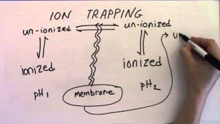 Ion Trapping - introduction