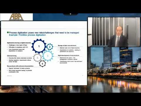 2018 0227 ABA & Oliver Wyman webinar 1 - Overview of Risk