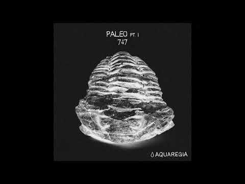 747 - Cambrian [AQR007]