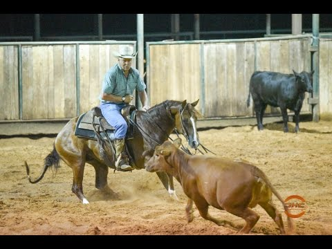 RR Once A Playboy - 2012 Sorrel Gelding by One Time Pepto